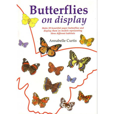 Butterflies on display, Annabelle Curtis